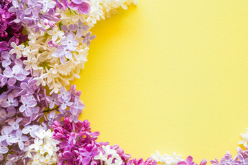 Fresh branches of colorful lilac blossoms on bright yellow background. Empty place for inspirational, happy text, lovely quote or positive sayings. Flat lay.