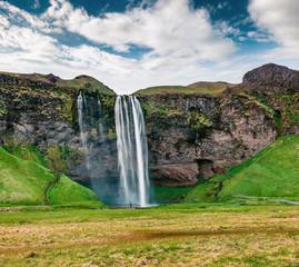 Photo sur Aluminium Vert Picturesque morning view of Seljalandfoss Waterfall on Seljalandsa river