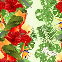Foto op Canvas Papegaai Seamless texture tropical bird cute small funny bird and red hibiscus and Strelitzia reginae monstera palm watercolor style on a white background vintage vector illustration editable hand draw