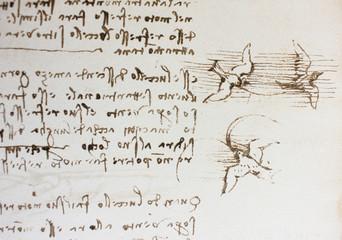 Bird, dove, mechanism of flight in the vintage book Manuscripts of Leonardo da Vinci, Codex on the Flight of Birds by T. Sabachnikoff, Paris, 1893