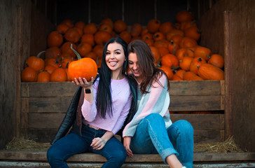 Fashionable beautiful young girlfriends together at the autumn pumpkin patch background. Having fun and posing
