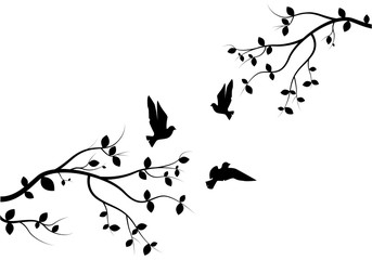Flying Birds on Branch Vector, Wall Decals, Birds on Tree Design, Couple of Birds Silhouette. Nature Art Design, Wall Decor isolated on white background