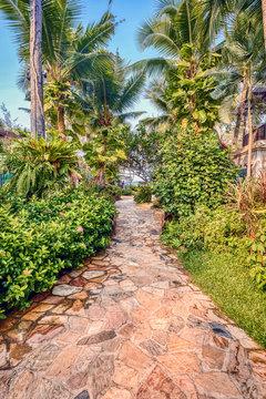 Tropical resort garden and pool