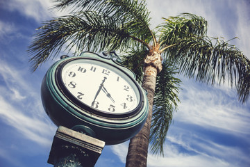 A vintage analog clock next to a palm tree