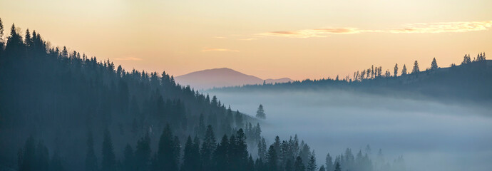 Poster Morning with fog Summer mountain landscape. Morning fog over blue mountain hills covered with dense misty spruce forest on bright pink sky at sunrise copy space background.