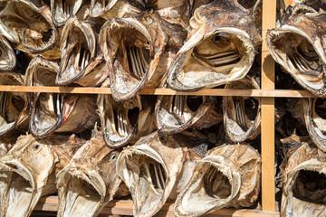 Stockfisch, Fischköpfe