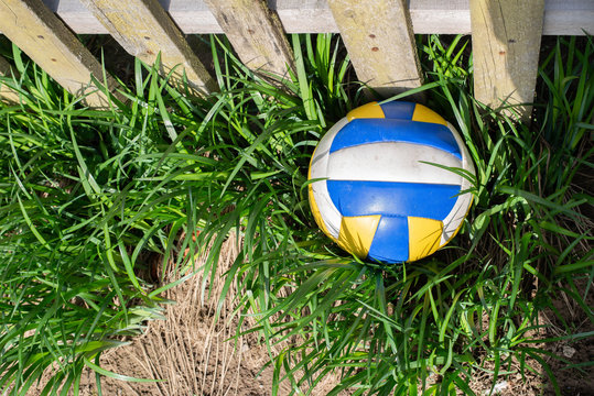 Volleyball ball on the grass
