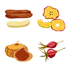 Fototapete - Isolated object of fruit and dried  icon. Set of fruit and food  vector icon for stock.