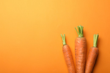 Flat lay composition with fresh carrots on color background. Space for text