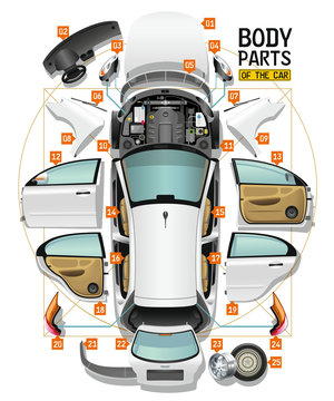 Parts of a body of the white car are spread out on a floor as analysis and entered in a circle and a square, like Leonardo Da Vinci's sketch