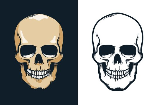 Skull in retro vintage style. Vector illustration.