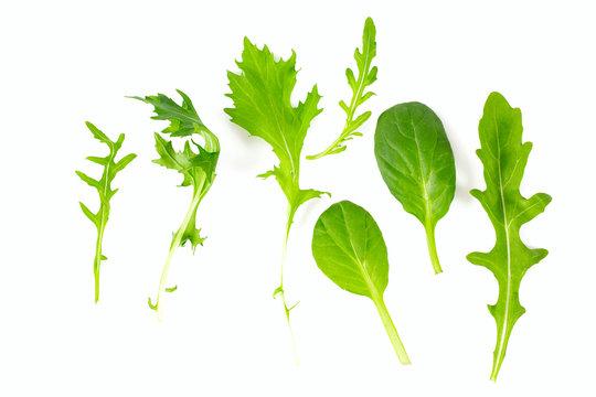 lettuce mix isolated on white background