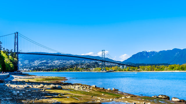 View of the Lions Gate Bridge, a suspension bridge that connects Vancouver's Stanley Park and the municipalities of North Vancouver and West Vancouver. Viewed from the Seawall pathway in Stanley Park