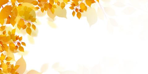 Obraz  紅葉 葉 秋 背景 - fototapety do salonu