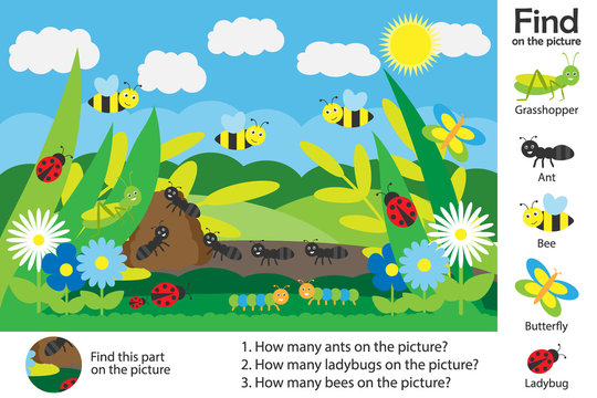 Activity page, glade picture in cartoon style, find images and answer the questions, visual education game for the development of children, kids preschool activity, worksheet, vector illustration