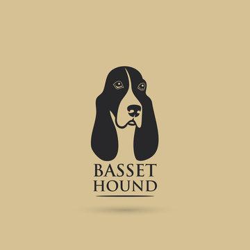 Basset hound dog - vector illustration - Vector