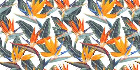 ,Modèle sans couture avec des fleurs tropicales et des feuilles de Strelitzia, appelée fleur de grue ou oiseau de paradis. Style réaliste, dessiné à la main, vecteur. Arrière-plan pour les impressions, le tissu, les papiers peints, le papier d& 39 emballa