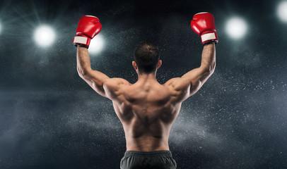 Boxer champion enjoying his victory on lights Wall mural