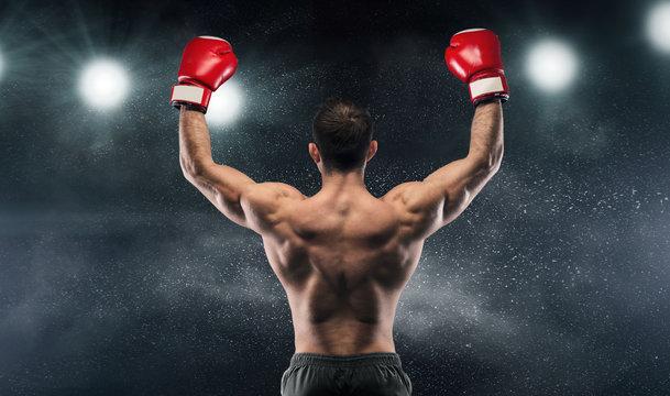 Boxer champion enjoying his victory on lights
