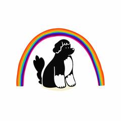 Dog sitting under rainbow