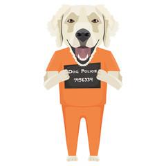 Polizeifoto Gefängniskleidung Golden Retriever