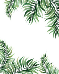 watercolor illustration of tropical leaves, green branches, fern. frame of tropical leaves. invitation to the wedding
