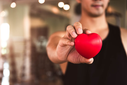 Happy sport man holding red heart in fitness gym club. Medical cardio heart strength training lifestyle. Handsome sport male workout exercise. Cardiac healthy and well-being. Massage ball in hand