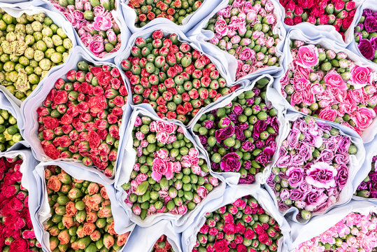 Overhead view of variety of rose flowers in sacks at market