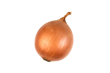Ripe onion on a white background. Top view.