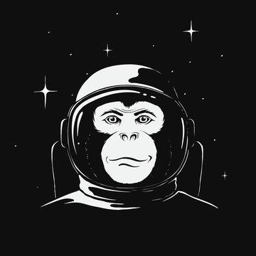 monkey astronaut in space
