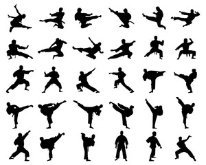 Black silhouettes of karate fighting  on a white background