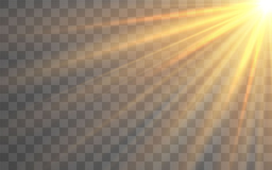 Obraz Sunlight special lens flash light effect on transparent background. Effect of blurring light. Vector Illustration - fototapety do salonu
