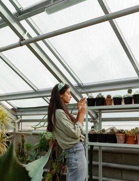 Woman taking picture of cactuses in hothouse
