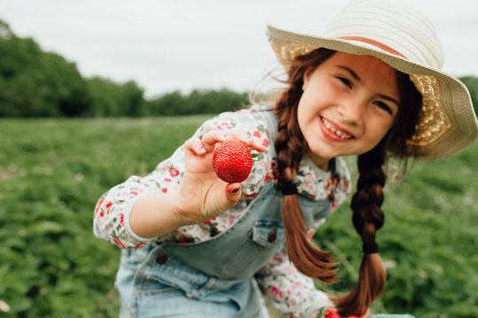 Portrait of smiling girl holding strawberry in field