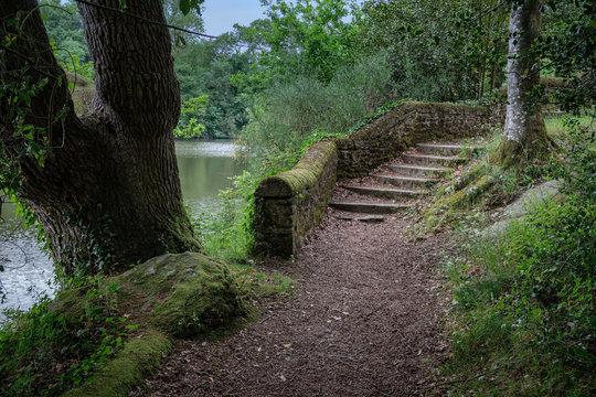 chemin au bord de l'étang