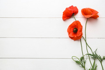 Spoed Fotobehang Klaprozen Beautiful red poppy flowers on white wooden background