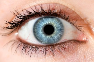 Photo sur Toile Iris Deep blue eye. Beautyful close up