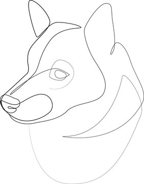 Continuous line Shiba Inu. Single line minimal style dog vector illustration. Portrait