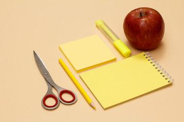 School supplies. Scissors, apple, pencil, notebook, felt pen and note-paper on beige background.