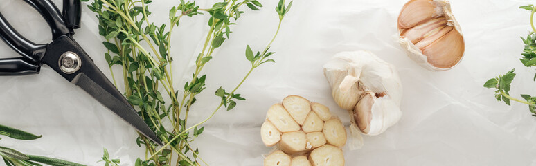 panoramic shot of garlic cloves, scissors and thyme on white paper background Wall mural