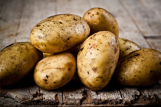 Newly harvested dirty potatoes heap on rustic wooden background.