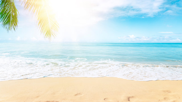 Sunny tropical Caribbean beach with palm trees and turquoise water, caribbean island vacation, hot summer day