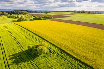 Luftaufnahme, Baumgruppe auf Agrarflächen, Schwäbischer Wald, Baden Württemberg, Deutschland