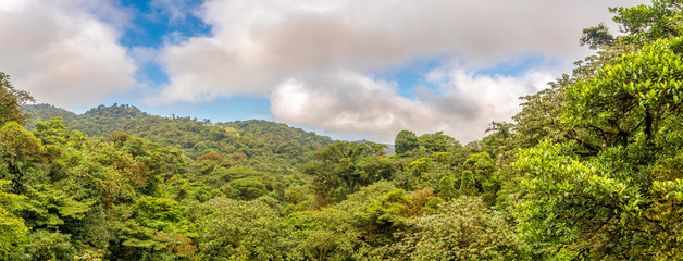 Wall Mural - Panoramic view to the valley of Monteverde Cloud Forest Reserve in Costa Rica