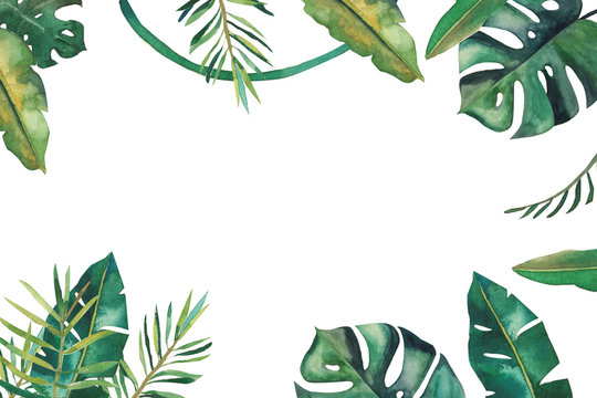 Handdrawn watercolor frame with tropical green leaves