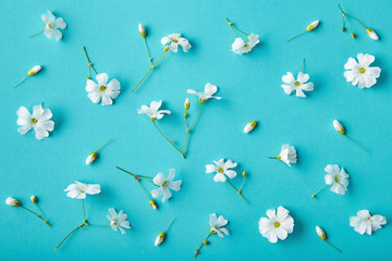 Spring flowers pattern on a blue background. Romantic blossom floral decoration design viewed from above. Top view Wall mural