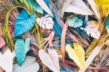 Tuinposter Paradijsvogel Colorful tropical and palm leaves. Concept art. Minimal concept.
