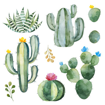 Green set with watercolor cactus,succulents and multicolored flowers.Nature collection.Perfect for your project,wedding,print,Birthday,wallpaper,pattern,invitations,scrapbook and more