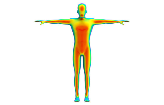 3d rendering. Front side of Human body scan by infrared ray structure measure with clipping path isolated on white background.