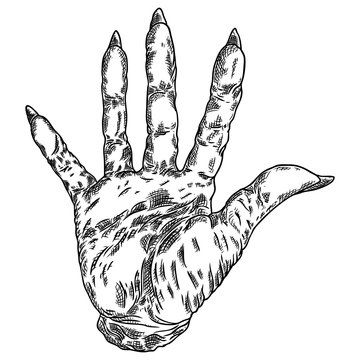 Scary zombie monster hand, hand drawn. Isolated on white background, for Halloween. Vector.